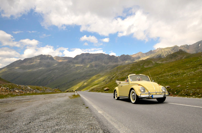 belmot_swiss_vw_kaefer