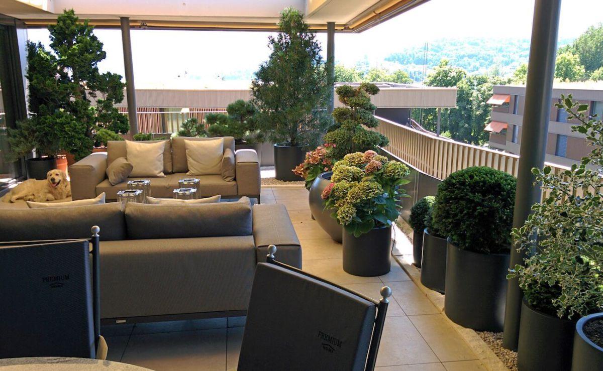 g rtnerei und events im pflanzenhaus in luzern. Black Bedroom Furniture Sets. Home Design Ideas