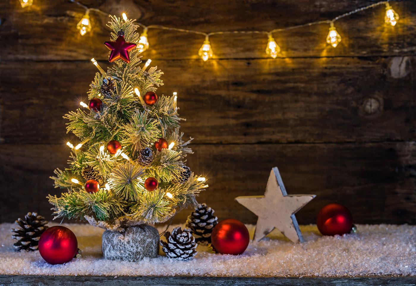 Weihnachtsbaum Herkunft.Wieso Ist Der Weihnachtsbaum Eine Tanne Oder Fichte