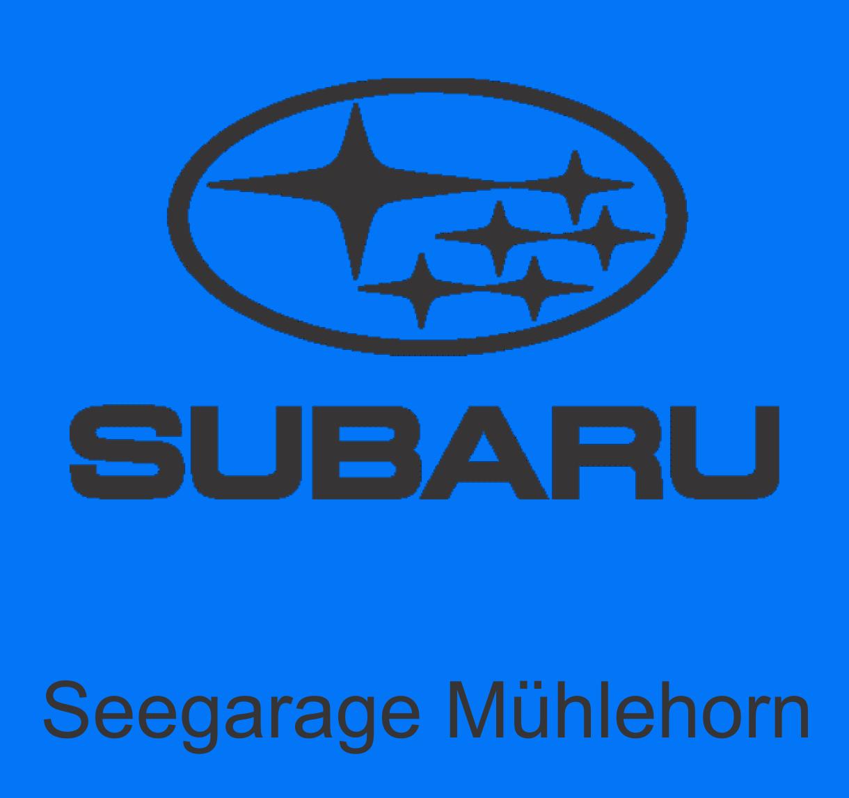 Seegarage Mühlehorn